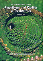 Amphibians-and-Reptiles-of-Tropical-Asia