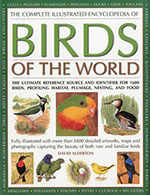 The-Complete-Illustrated-Encyclopedia-of-Birds-of-the-World