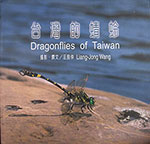 dragonflies-of-taiwan
