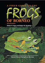 frogs-of-borneo