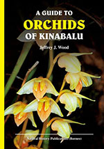 guide-orchids-of-kinabalu
