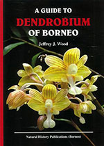 guide-to-dendrobium-of-borneo
