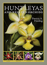 huntleyas-&-related-orchids