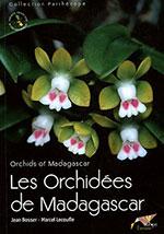 les-orchidees-de-madagascar-150