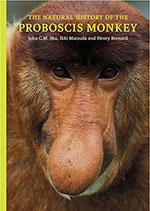 natural-history-of-the-proboscis-monkey