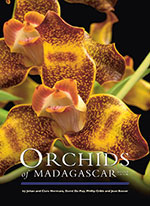 orchids-of-madagascar