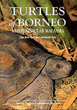 turtles-of-borneo-&-peninsular-malayasia