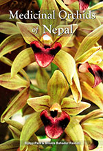medicinal-orchids-of-nepal-150